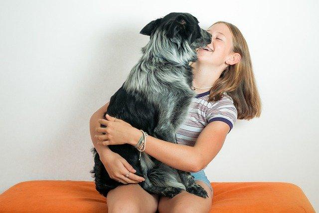 Confinement : c'est plus agréable avec un animal de compagnie